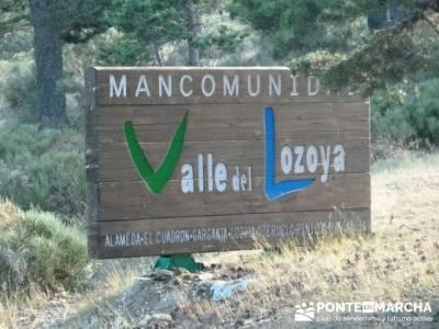 Senderismo a la luz de la luna - Cascada de San Mamés; zapatos para senderismo